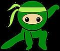 ninja_gymnastics_BOY.png