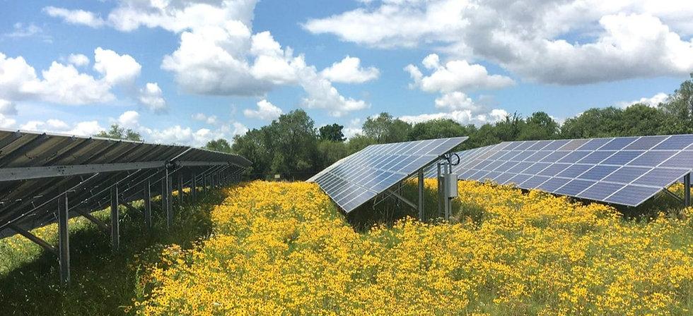 solar%20farm_edited.jpg