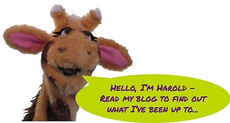 Harold's Blog.jpg