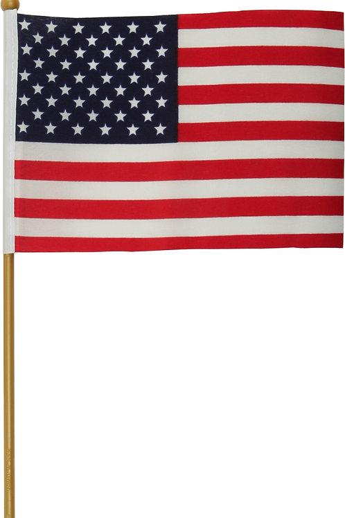 Harddrive Usa Flag W/Pole