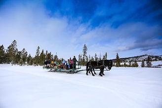 Activities_Winter Sleigh Rides.jpg