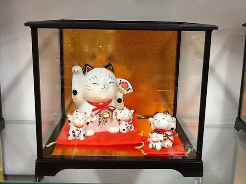 Glass Display Case - Height: 9 inches