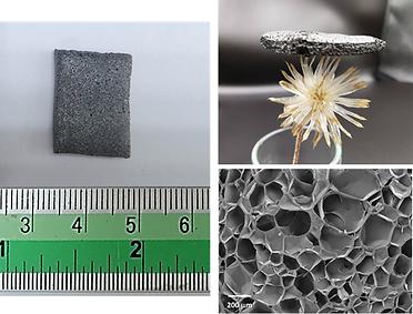 carbon membrane.png