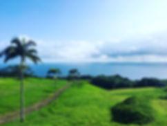 hawaii landscape.jpg