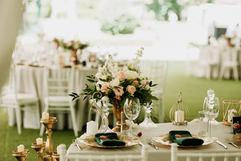 Petronela & Andrei {wedding} WEB - 00145