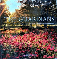 Recommended Reading - The Guardians.jpg