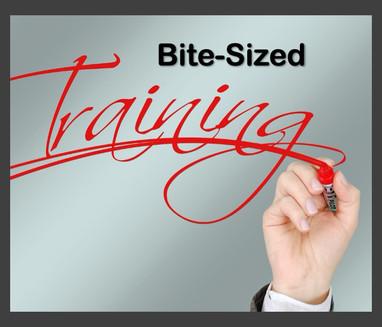 Bite-Sized Training