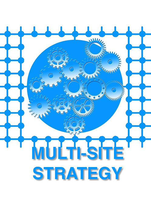 Multi-Site Strategy Consultation