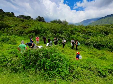 Jujuy celebra el día de la Educación Ambiental plantando nativas