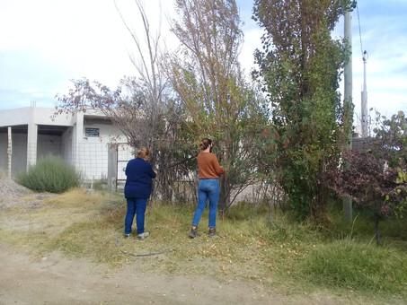 Recolección de semillas con la Secretaría de Ambiente y Cambio Climático de Rio Negro