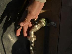 Día Mundial del Agua: ¿cómo hacer un uso eficiente del recurso para producir alimentos?