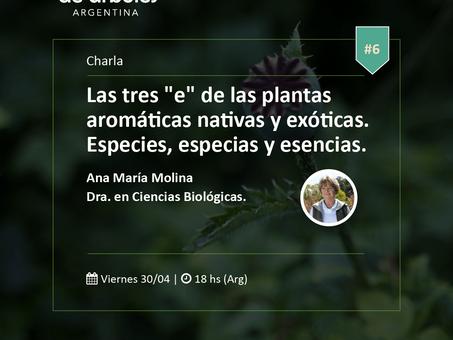 Nuevo encuentro sobre plantas aromáticas nativas y exóticas de #MillóndeÁrboles