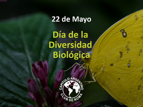 La pérdida de la biodiversidad, es la pérdida de la humanidad