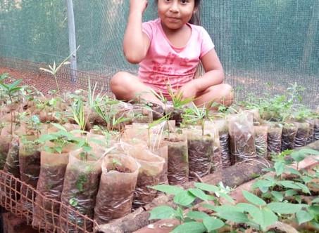 El Vivero Comunitario de Árboles Nativos de Yasy Porã se suma a la campaña #ViverosEnAcción