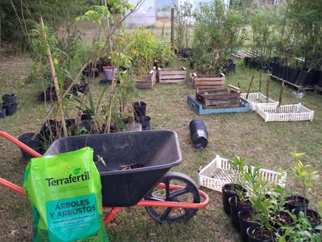 ¡Gracias Terrafertil por la donación de tierra y sustrato para nuestro Vivero de Nativas!