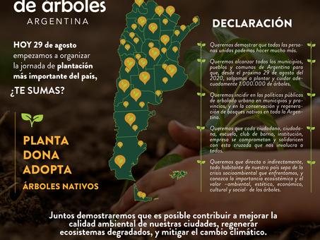 El 29 de agosto, día del árbol, empezamos a plantar el primer millón
