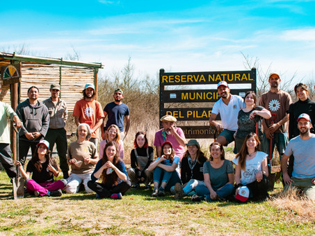 Celebrar el día del árbol plantando nativas y cuidando la biodiversidad