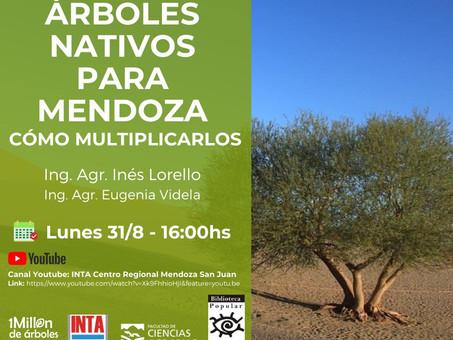 La Biblioteca Popular Chacras de Coria, Mendoza, se suma a la campaña #InstitucionesEnAcción