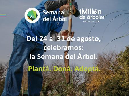 ¡Del 24 al 31 de agosto sumate a la Semana del Árbol!