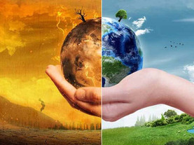The proposal of the Ecological Economy
