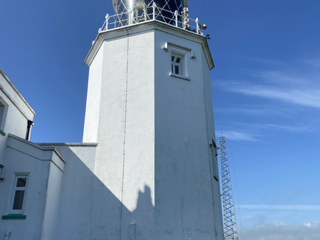Learning by Being There: Lizard Lighthouse and Local Wildlife