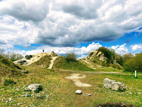 Educational Days Out: Fossil Hunting at Wren's Nest Nature Reserve
