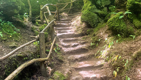 Learning by Being there: Literary Inspirations: Puzzlewood