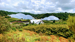Learning by Being There: The Eden Project