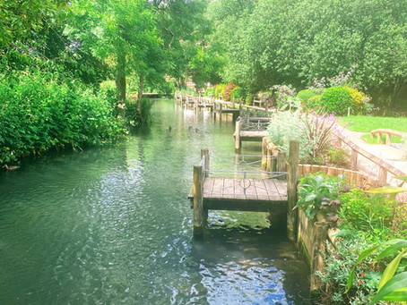 Learning by Being There: How to Catch & Cook a Fish, Bibury Trout Farm