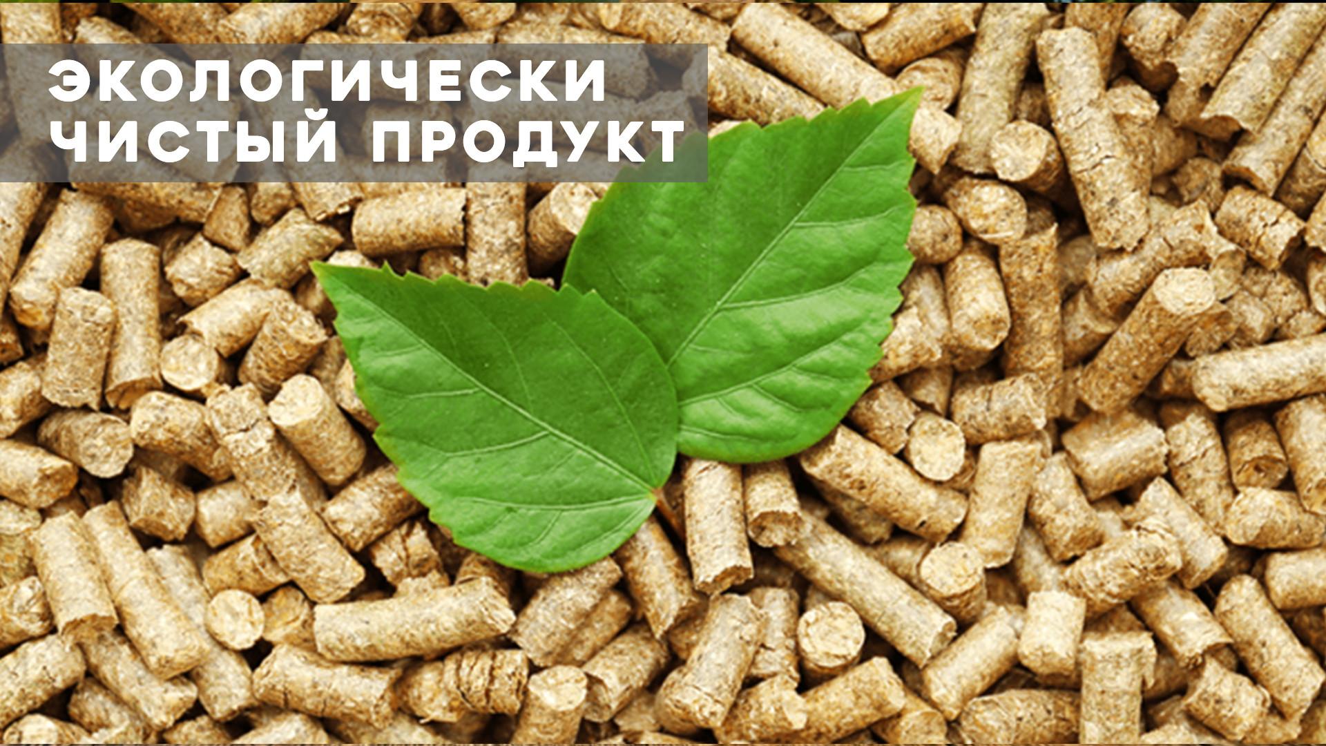 Экологический