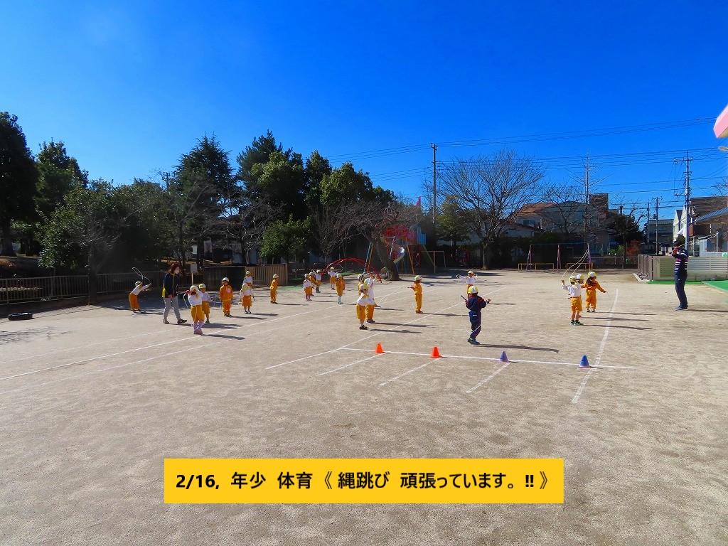 1433-11 14,16, 体育 年少 (1)