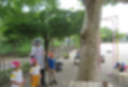 8-05-0 08,27, 夏季 預かり セミいっぱい (3).jpg