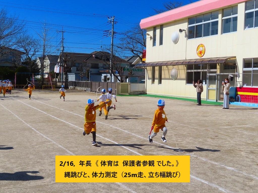 1433-31 14,16, 年長 体育 参観 (31)