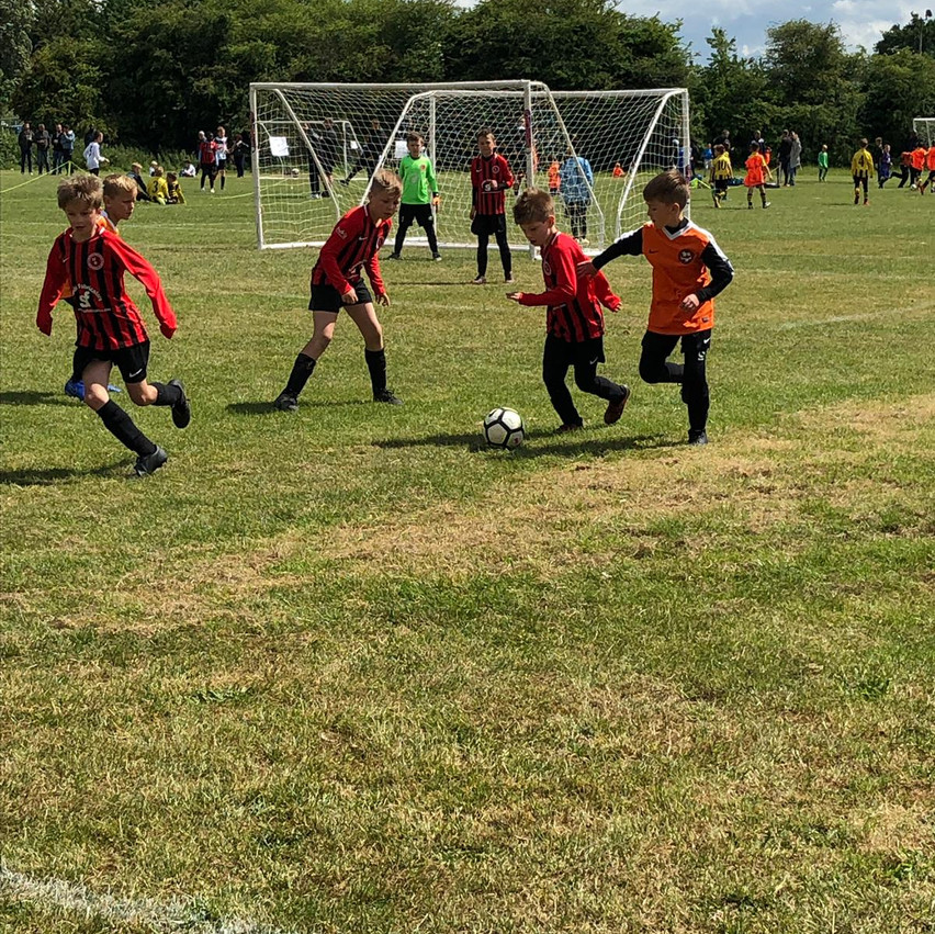 U9 Hakws at the Tiger tournament June 20
