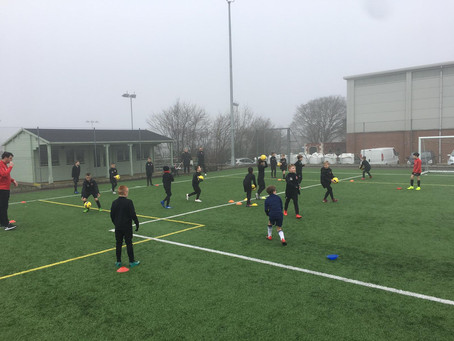 Training in the mist !