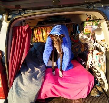 My Top 10 Essential Campervan Items