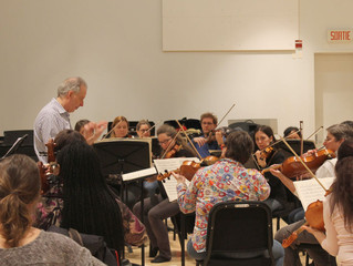 Ensemble Sinfonia members share a passion for music