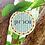 Thumbnail: שלט רימונים עגול