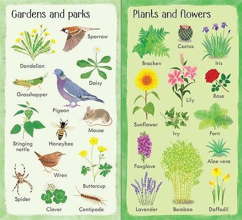 199 Things in Nature (Board Book)