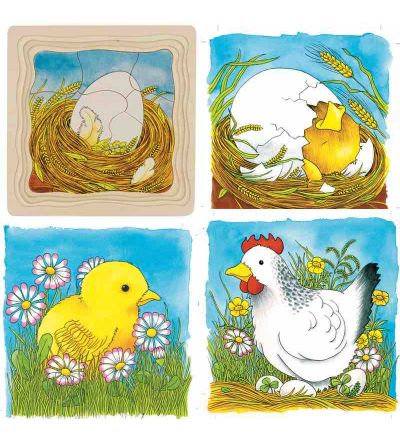 Goki Life Cycle of Chicken Layer Puzzle