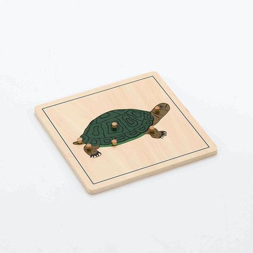 Tortoise Wooden Puzzle