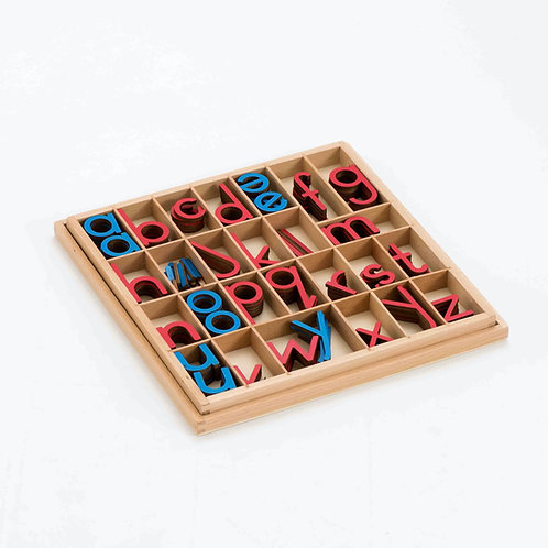 Montessori Movable Alphabet with Matching Sorting Tray and Lid