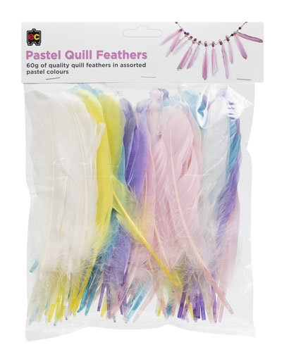 Craft Quill Feathers 60g