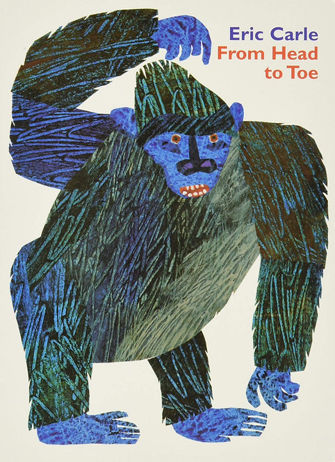 From Head to Toe (Board Book)