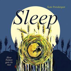 Sleep (Hardcover)
