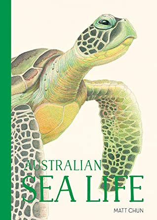 Australian Sea Life      Tactile Illustration