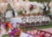 ApelPhotography-22.jpg