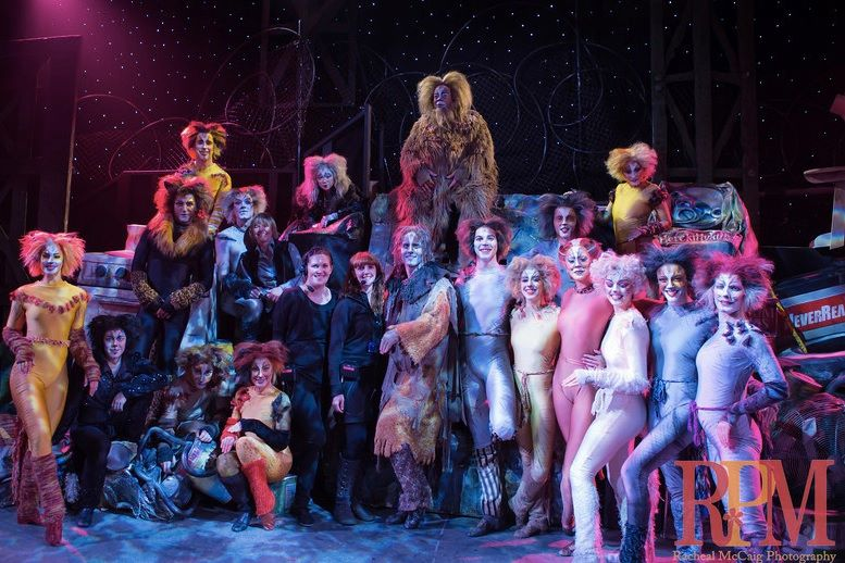 Cats Full Cast