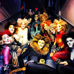 Cats Backstage