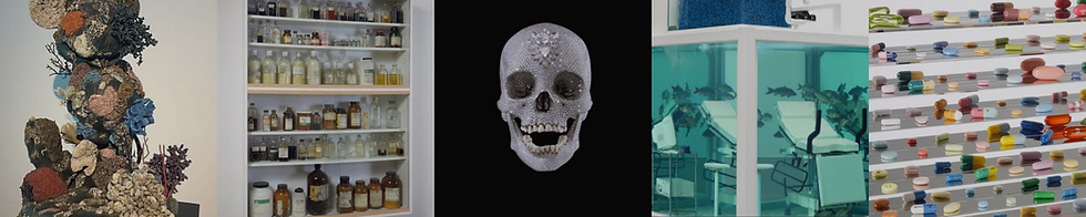 hirst_1.png